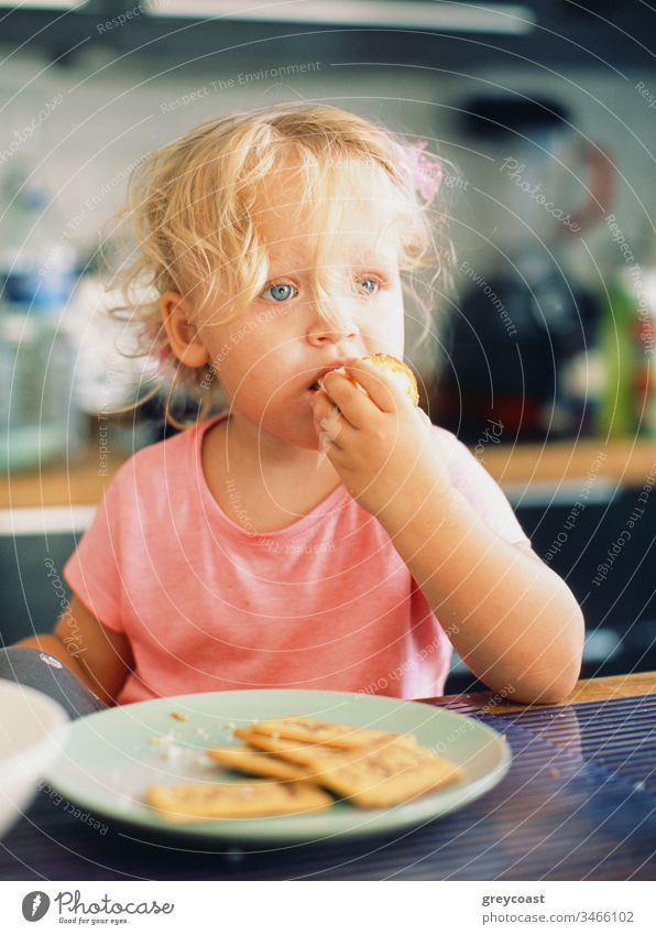 Portrait of a little girl with tousled fair hair having breakfast in the kitchen kid eat child toddler portrait baby meal morning home bun pastry cookie