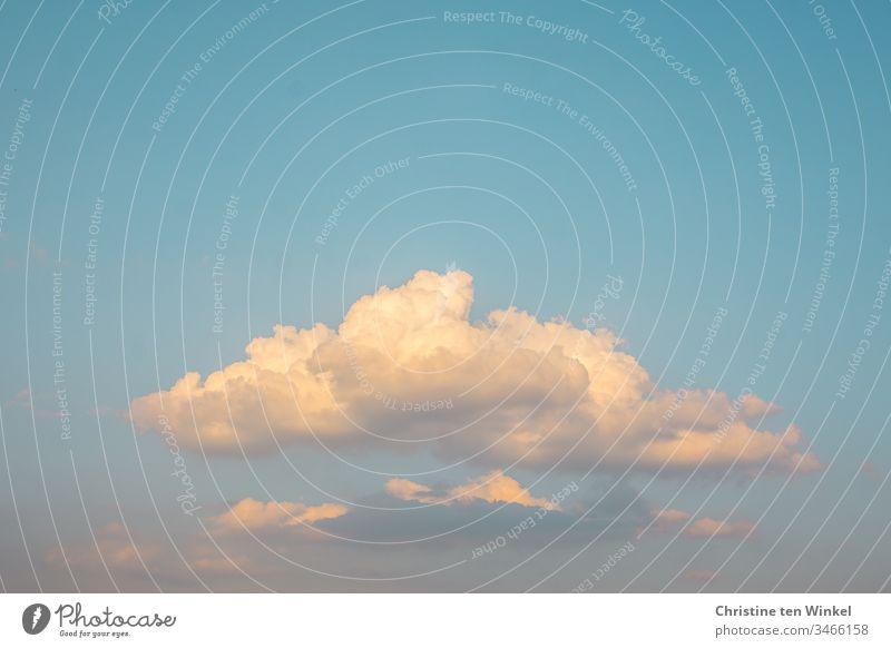 Cumulus cloud in the evening sun Clouds Sky Blue sky evening sky Sunlight Shadow Sunset Beautiful weather Exterior shot Light Cumulus Clouds cumulus cloud
