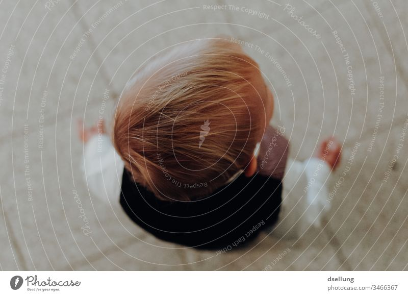 View from above of a small blond boy in fancy clothes Child Cute people youthful Little Boy (child) Lifestyle holidays innocence daydreaming little boy Infancy