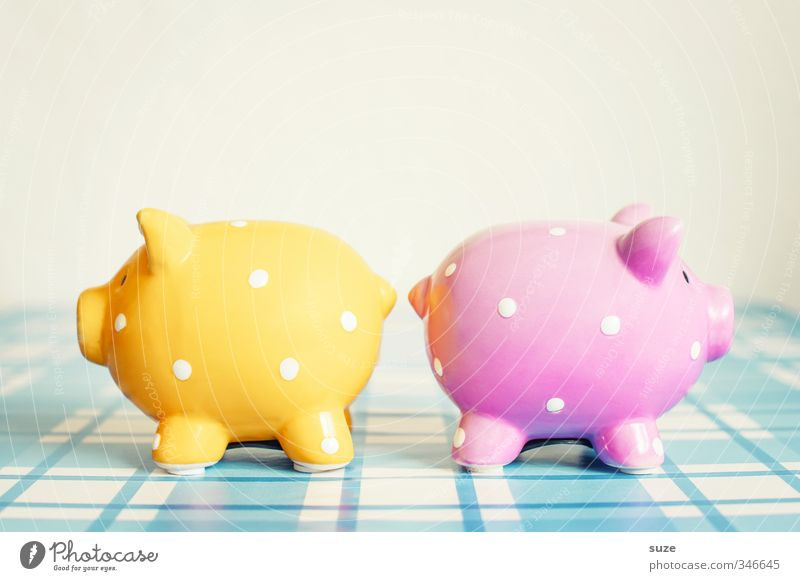 Blue Yellow Funny Happy Small Pink Poverty Lifestyle Design In pairs Decoration Cute Shopping Money Plastic Kitsch