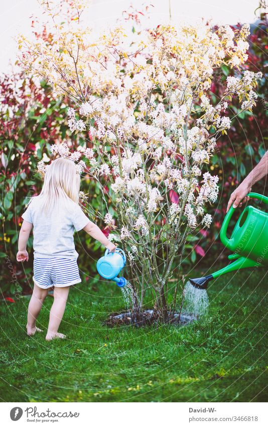 Teamwork - Father and child watering together in the garden Father with child Child Watering can girl Daughter Garden Together Attachment Parenting soak plants