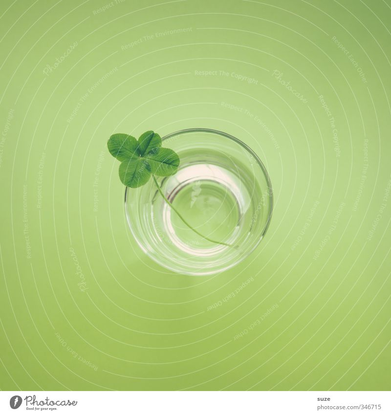 Green Water Leaf Environment Happy Small Natural Glass Design Beverage Cute Simple Round Creativity Idea