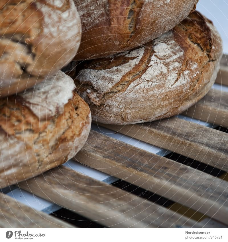 crust Food Dough Baked goods Bread Nutrition Organic produce Vegetarian diet Profession Trade Craft (trade) Fragrance Healthy Delicious Brown Appetite Squander
