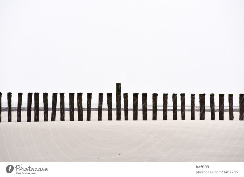 Stakes on the beach Low tide Beach Sand North Sea Ocean Mud flats Coast coastal protection coastal strip coastal stretch stakes Horizon Sky Tide Landscape