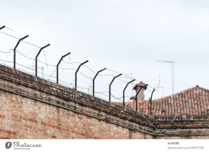 Barbed wire on old wall Fence Barbed wire fence Courtyard Border Protection Dangerous Metal Deserted Thorny Threat Barrier Safety Bans Wire netting fence
