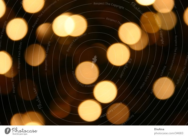 Luminous spots Circle Oval Yellow Brown Black Glittering Physics Blur Pattern Decoration Style Long exposure Point Warmth circles