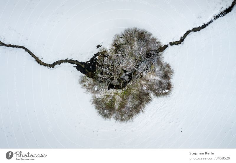 Aerial perspective at a single tree and a crossing little river in a winter snowy top view. one creek alone copy space drone calm no person background abstract