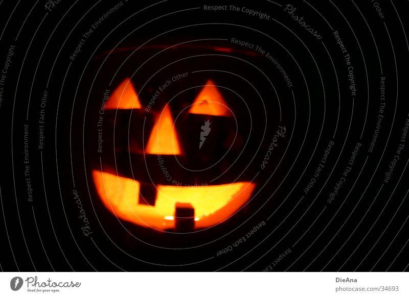 happy hokkaido Lamp Hallowe'en Craft (trade) Autumn Creepy Orange Fear October Frightening Tooth space Pumpkin Ghosts & Spectres  Set of teeth Colour photo