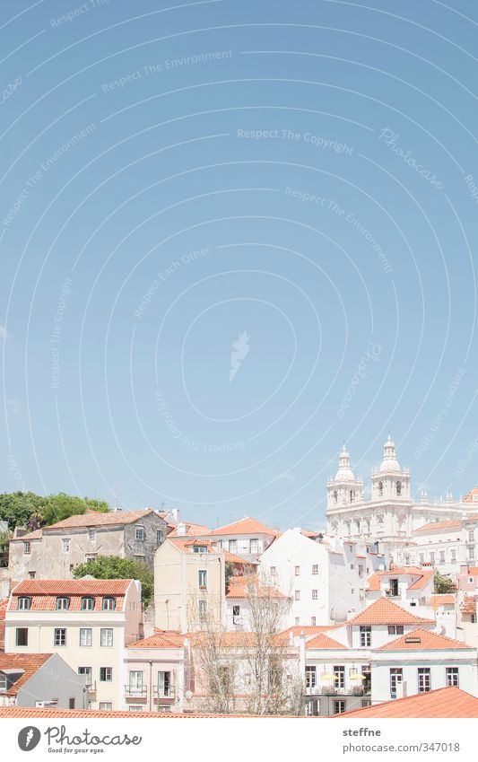 Dear holiday greetings, Lisa (Bonn) Sky Cloudless sky Spring Summer Beautiful weather Tree Lisbon Portugal Capital city Old town House (Residential Structure)