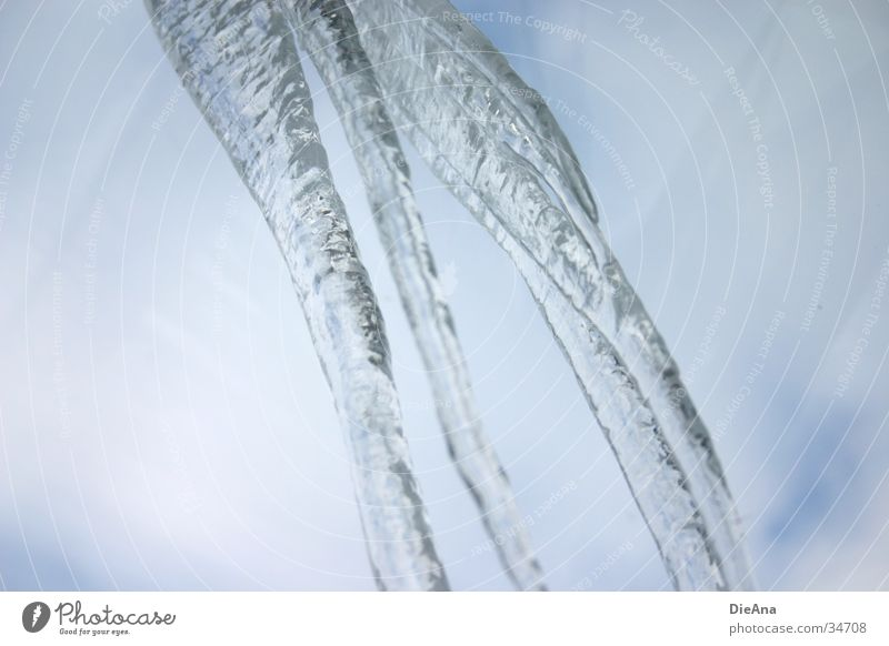 Icicle Winter Frozen Cold Gray Sky Water Blue hang down