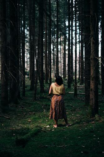 A woman in colourful summer clothes stands between many tree trunks in the forest on moss-covered ground Forest Moss Girl Woman Green Summer clothes tight Dark