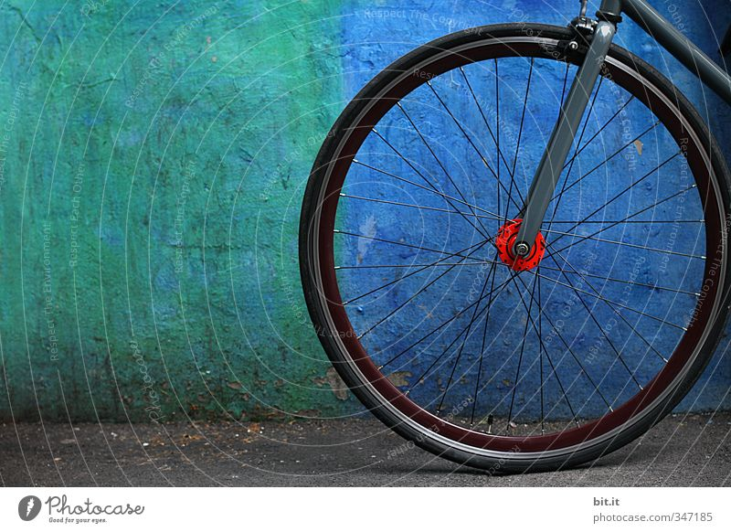 Blue Green Black Wall (building) Street Sports Movement Wall (barrier) Stone Line Facade Bicycle Success Arrangement Concrete Circle