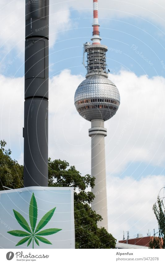 this place smells like... Berlin Marijuana Relaxation Cannabis Medication Intoxicant Plant Berlin TV Tower Exterior shot Hemp medicine Alternative medicine