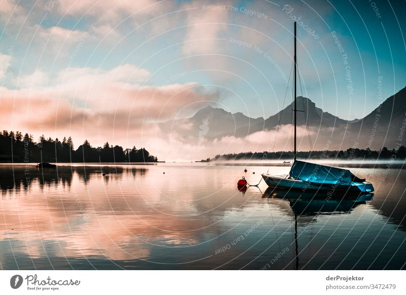 Sunrise at lake Wolfgangsee Central perspective Deep depth of field Sunlight Reflection Contrast Shadow Light Copy Space bottom Day Copy Space top