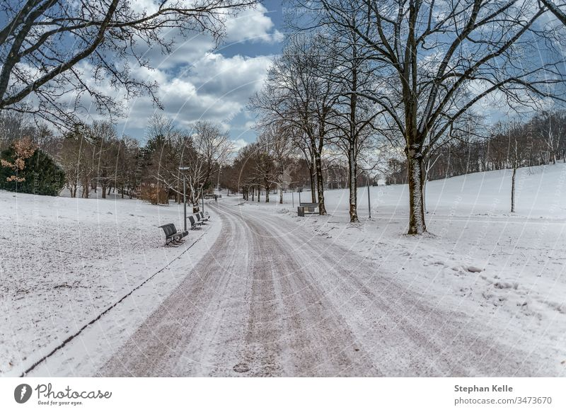 Winter in Munich, the way to the snow. winter munich park nature landscape sky clouds white cold climate environment nice beautiful season frozen bench outside