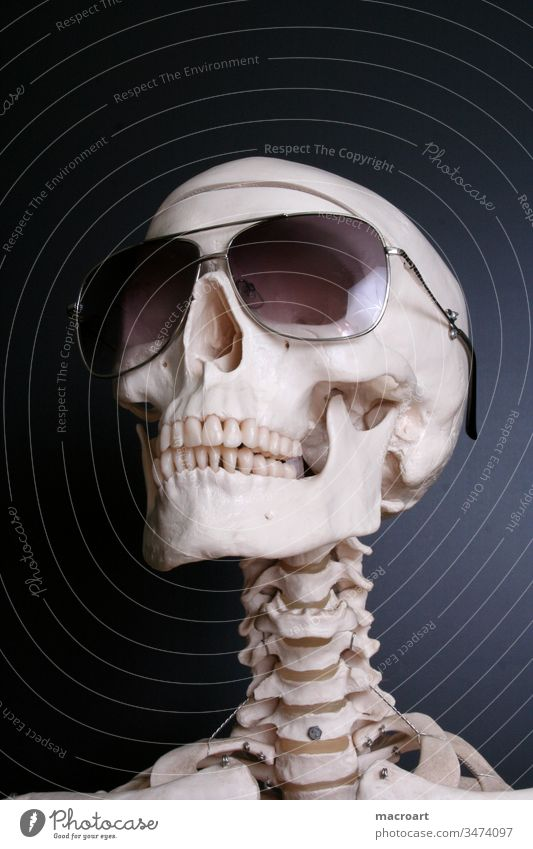 skeleton with sunglasses bones head skull dead death black human body skelett sonnenbrille schwarz tot tod kopf schŠdel knochen