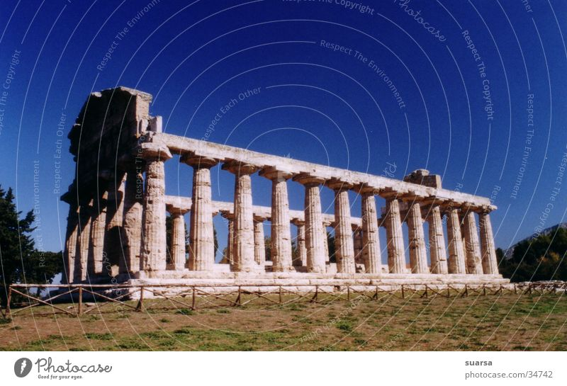 Vacation & Travel Architecture Europe Culture Italy Column Römerberg Greek Paestum