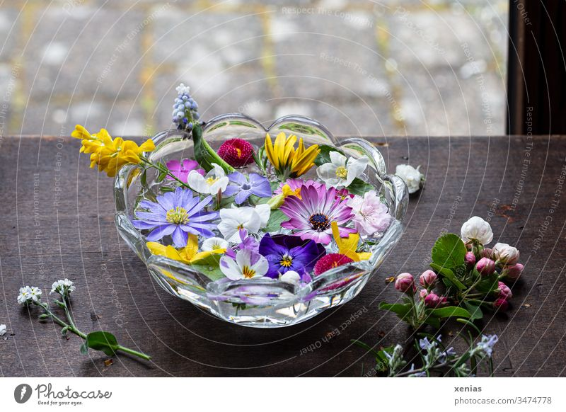 It smells like... springtime potpourri of flowers in a bowl of water is at the window water bowl Blossom Window Wooden table anemone Glass bowl Spring