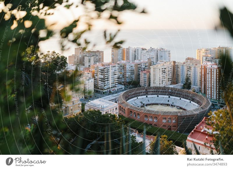 The historic bullfighting arena of Malaga at sunrise Bullring Sunrise Mediterranean sea Tourism Tourist touristic City trip Vacation & Travel holidays