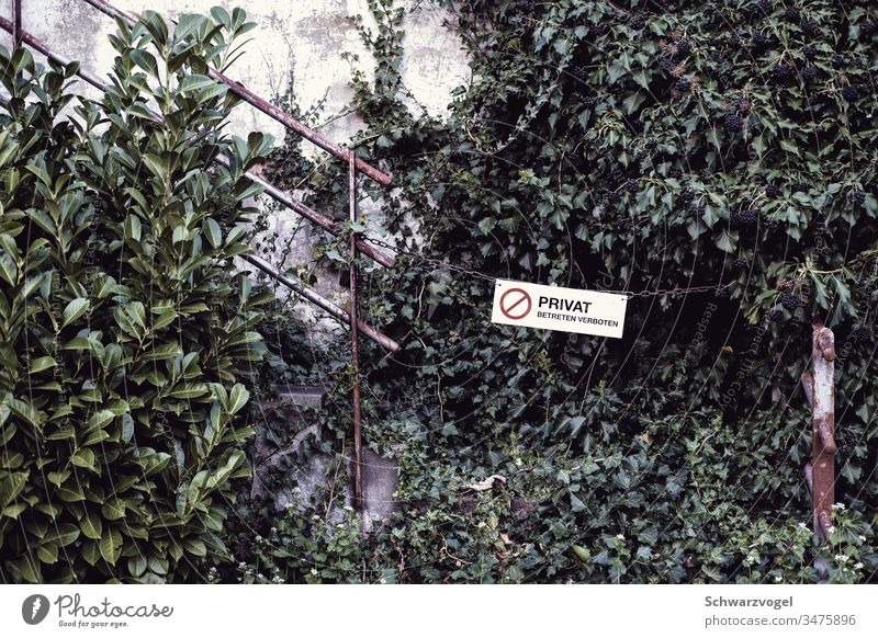 Private - no trespassing / a closed passageway interdiction Prohibition sign Signage cordon Passage overgrown Feral Barred obstacle