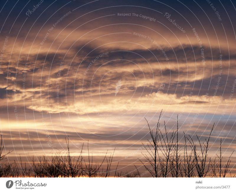 evening sky Clouds Sunset Sky Evening