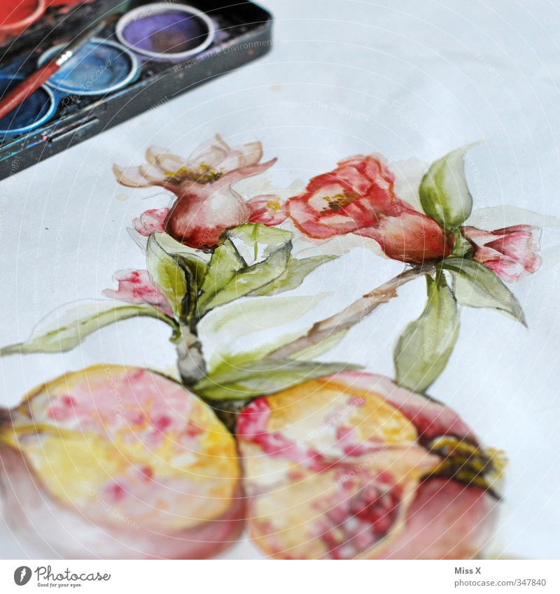 Dye Blossom Art Leisure and hobbies Painting (action, artwork) Paper Creativity Painting and drawing (object) Draw Paintbrush Drawing Work of art