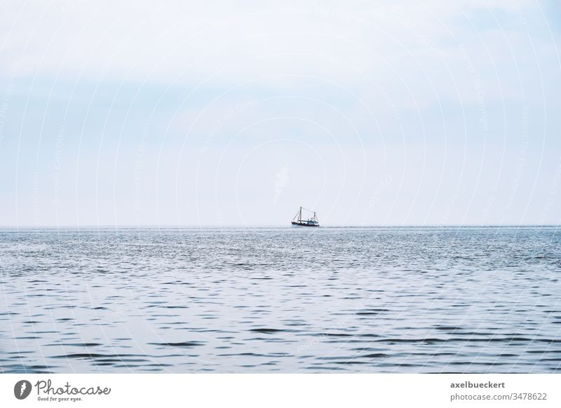 distant shrimp boat on the north sea ocean fishing ship water germany fishery fisheries commercial calm tranquility nature blue industry trawler marine