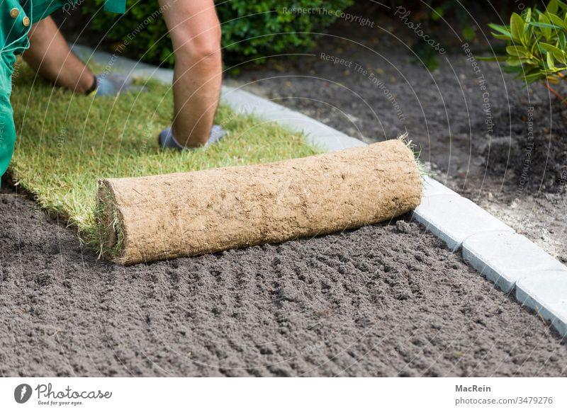 Rollrasen anlegen außenaufnahme erde fertigrasen garten gartenbau gartengestaltung grasnabe grün landschaftsbau landschaftsgärtner mutterboden natur pflege