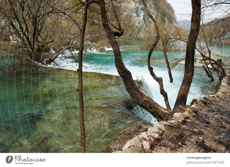 Plitvice Lakes, Croatia Environment Nature Landscape Water Spring Autumn Climate Climate change Weather Bad weather Gale Tree Forest Lakeside River bank