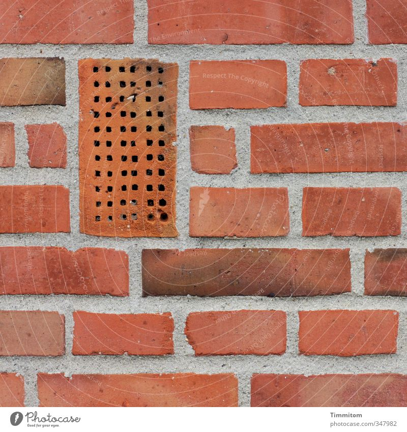 Red Wall (building) Wall (barrier) Line Esthetic Simple Brick Hollow Sharp-edged Seam Detached house Vacancy Edgewise