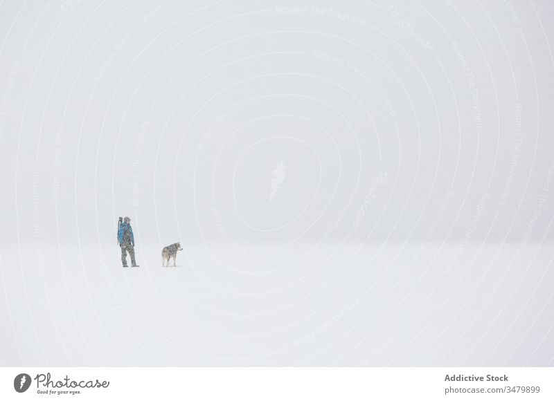 Man walking with dog in snowy stormy countryside man winter cold pet weather male frost nature friend white canine together purebred pedigree outerwear idyllic