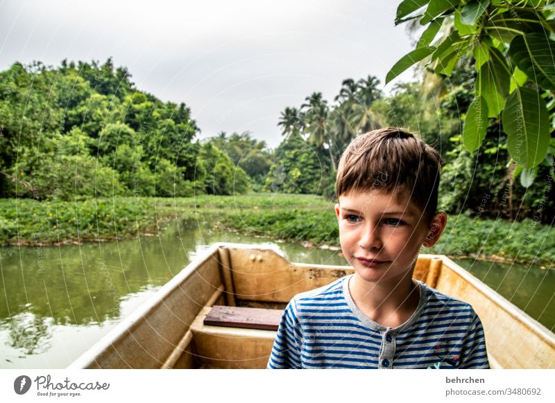 favourite person   because he is an adventurer plants Research Quaint Boy (child) Son Child Discover Rowboat Palm tree green Environmental protection River