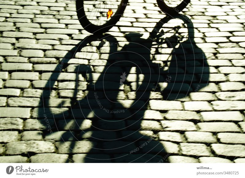 cobblestone bike ride Cycling Shadow Cobblestones cycle Bicycle sunny Exercise in fresh air Movement Street Leisure and hobbies Means of transport bike tour