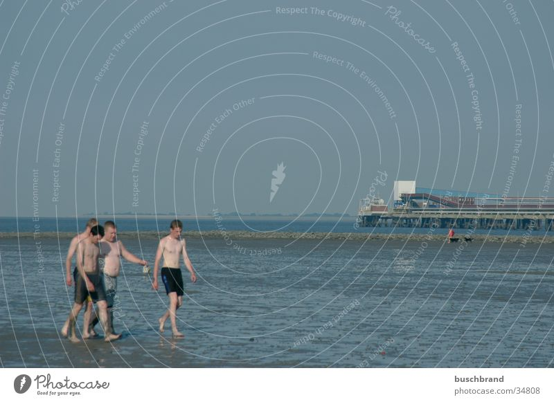 Youth (Young adults) Beach Swimming & Bathing Mud flats Jadebusen Wilhlemshaven