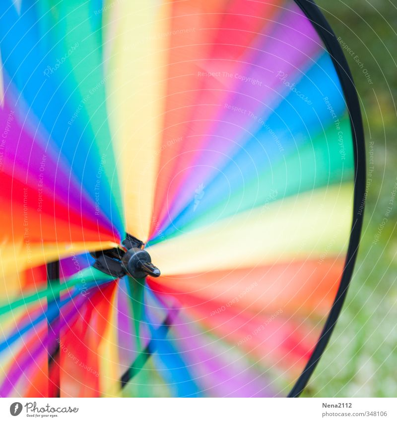Windy... like today Decoration Kitsch Odds and ends Ornament Rotate Round Speed Wind energy plant Windmill Garden Garden festival Prismatic colors Multicoloured
