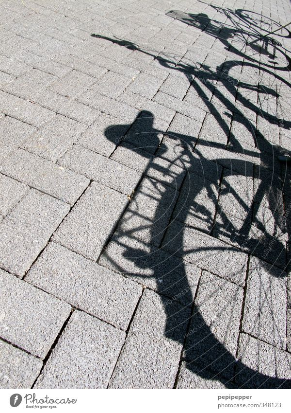 bicycles Leisure and hobbies Vacation & Travel Trip Summer Cycling Schoolyard Street Stone Gray Exterior shot Deserted Shadow Contrast Silhouette