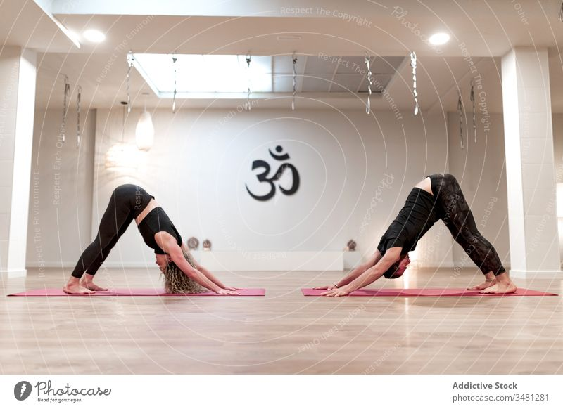 Man and woman practicing yoga together in downward facing dog pose athletic position practice stretch class training flexible exercise body sportswear healthy