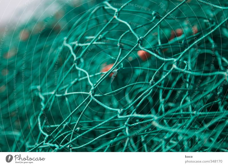 Going online? Fishing net Line Knot Net Network Simple Green Orange Colour photo Exterior shot Close-up Detail Macro (Extreme close-up) Pattern