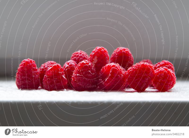 Freshly harvested raspberries: a delicacy! fruits Berries Raspberry Summer Harvest fresh fruit fresh fruits Deliciousness Delight Healthy vitamin bomb Food