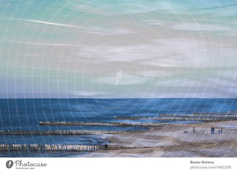 Encounter with nature Nature Ocean Baltic Sea Bodden vacation Relaxation stroll Beach Vacation & Travel coast Sky Sand Tourism Water Waves Exterior shot Horizon