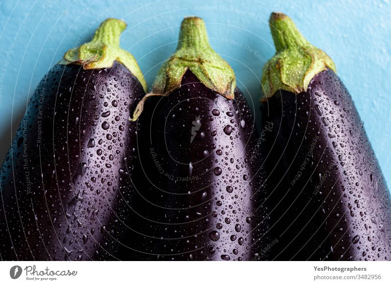 Fresh eggplants  with drops of water, close-up 3 above view agricultural agriculture aubergine bio dark diet droplets farmers market food food ingredients
