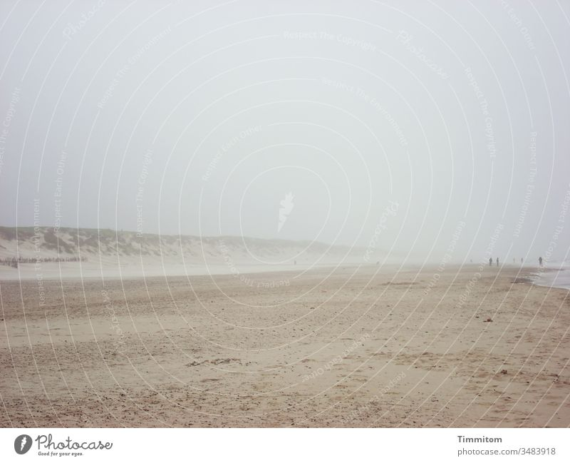 Sounds | of wind and waves on Danish beach Denmark Sand Beach dunes Wind Waves Noise people North Sea vacation Nature Gale