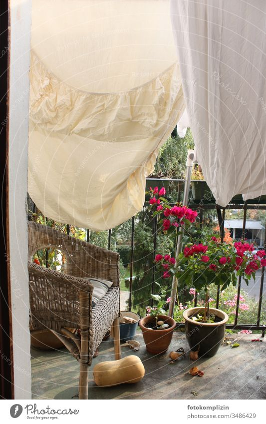 Bed linen on balcony Bedclothes Clothesline Laundry Washing Dry Hang up Household Living or residing Housekeeping Washing day Balcony balcony flowers