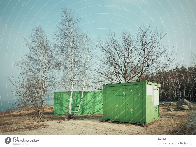 Set in the sand Container Green construction container two trees Forest Sky Lake Lausitz forest Eastern Germany Lake Bärwald stones Ground Grass Bushes Sand