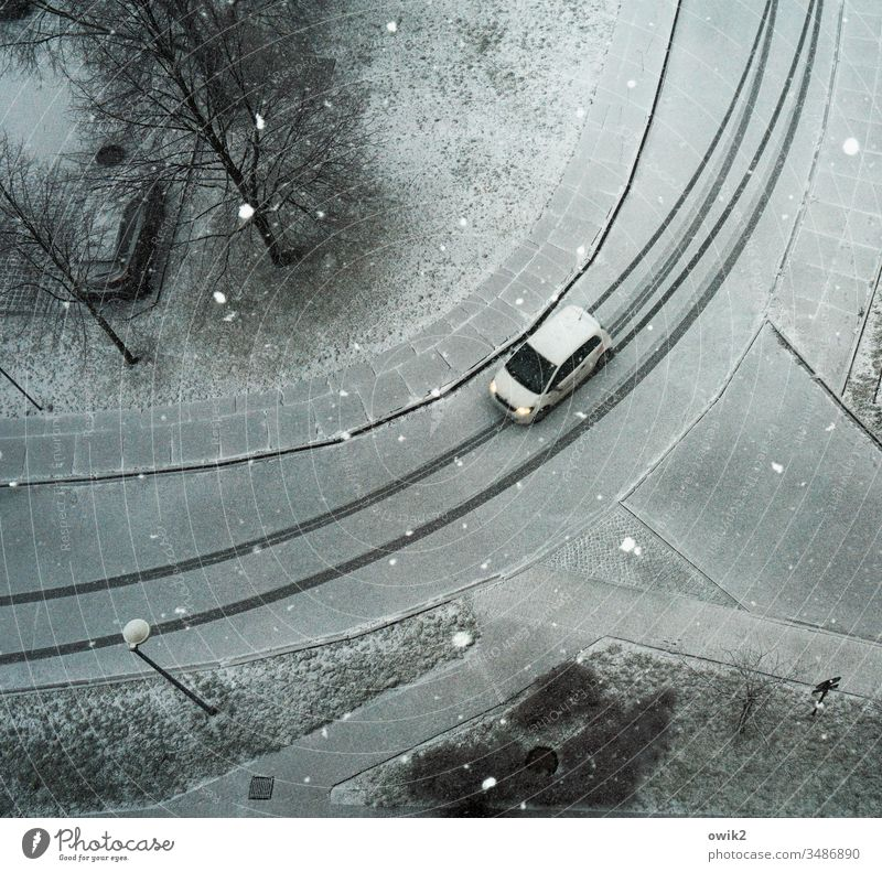 White car on white background Bird's-eye view view from above Downward Street Tracks Winter Vehicle Car Snow snowflakes snowy Skid marks Lonely trees Bushes