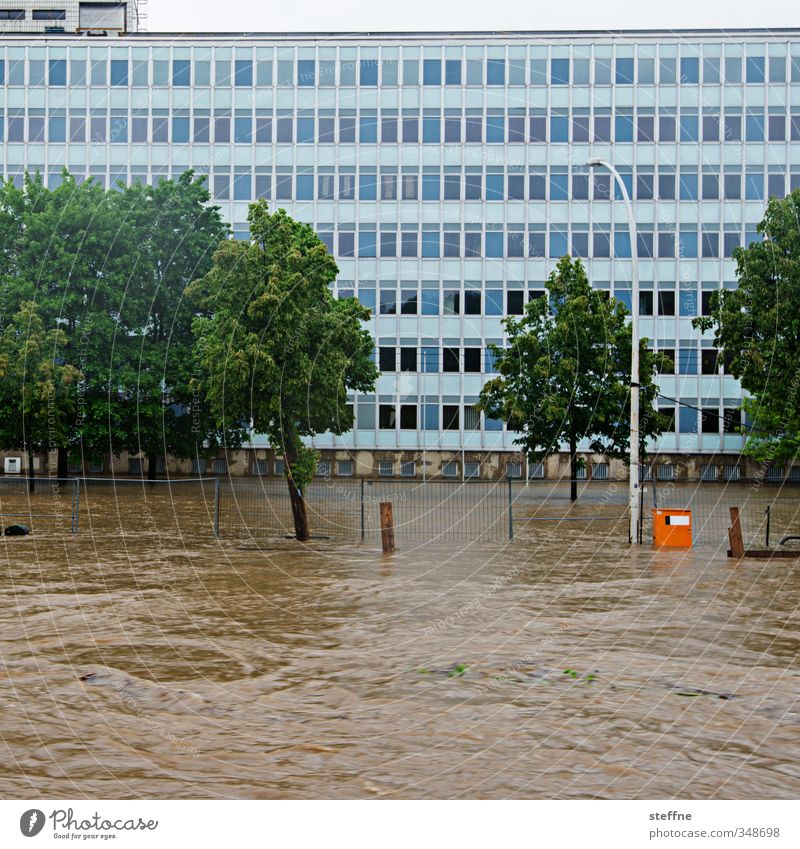 waterway Environment Nature Water Climate Climate change Weather Bad weather Rain Tree Transport Dangerous Deluge Inundated Flood Tidal wave Colour photo