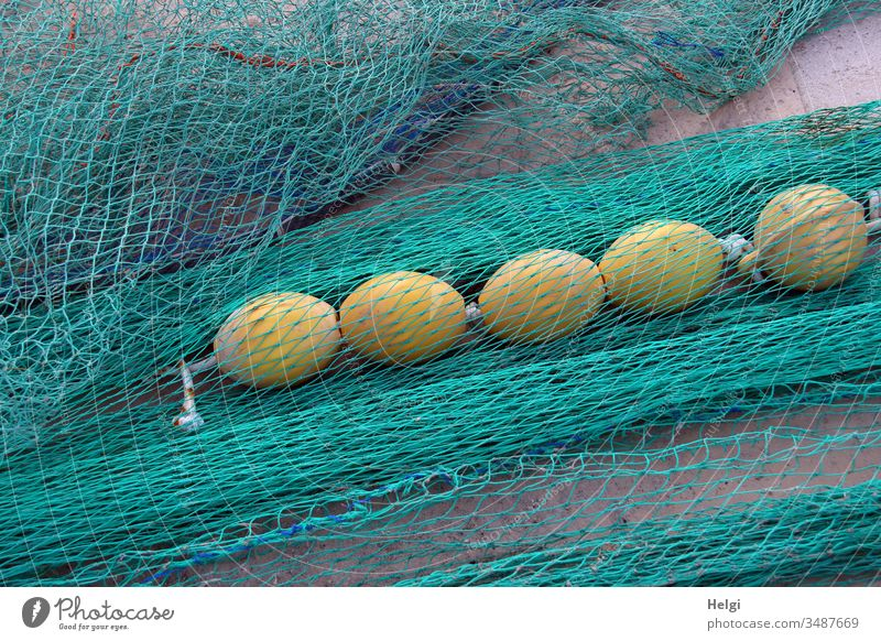 turquoise fishing nets with yellow floating balls are lying at the harbour Fishing net Net Network Harbour Fishery Colour photo Exterior shot Day Deserted
