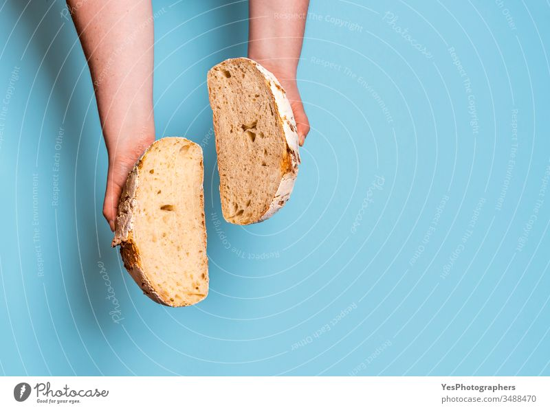 Sourdough bread sliced in two against a blue background. above view bake baked bakery baking bread bread interior carbs comfort food crust cut cut out fresh