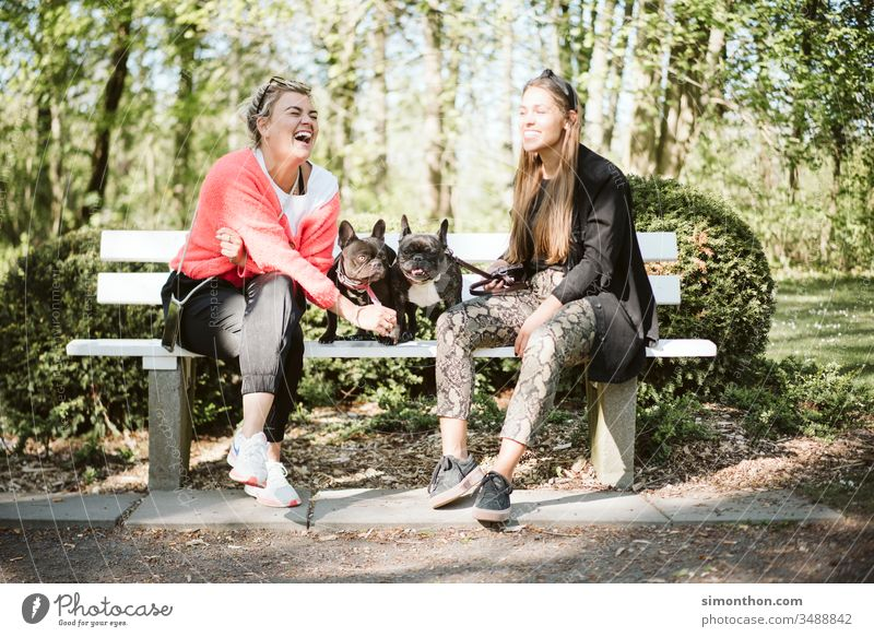 girlfriends To go for a walk dogs Friendship Together Joy Lifestyle Exterior shot Happiness Smiling people Love Family & Relations Happy Nature Park Summer