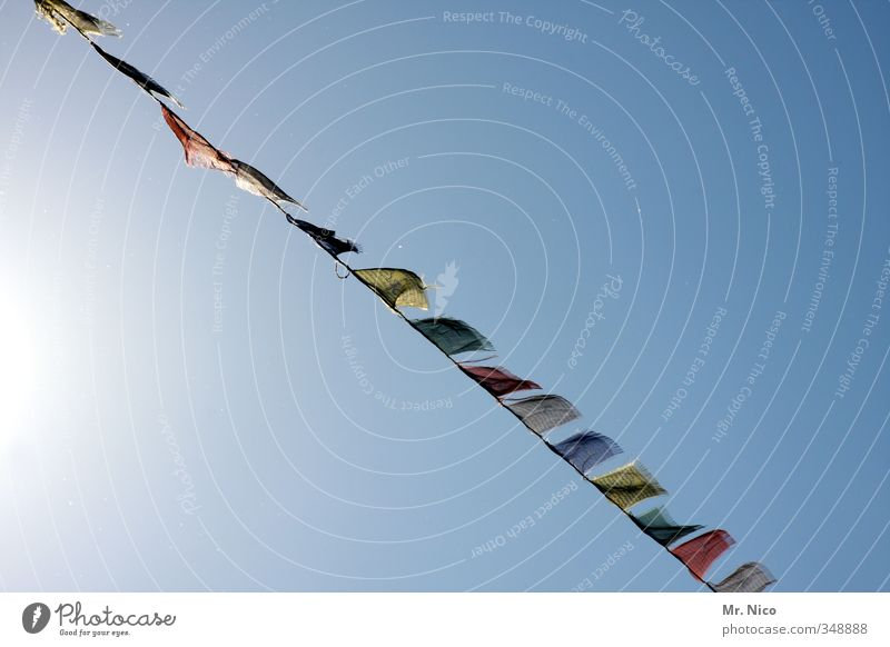 blowin´ in the wind Lifestyle Vacation & Travel Tourism Summer Environment Cloudless sky Climate Beautiful weather Multicoloured Wind Prayer flags Flag Row